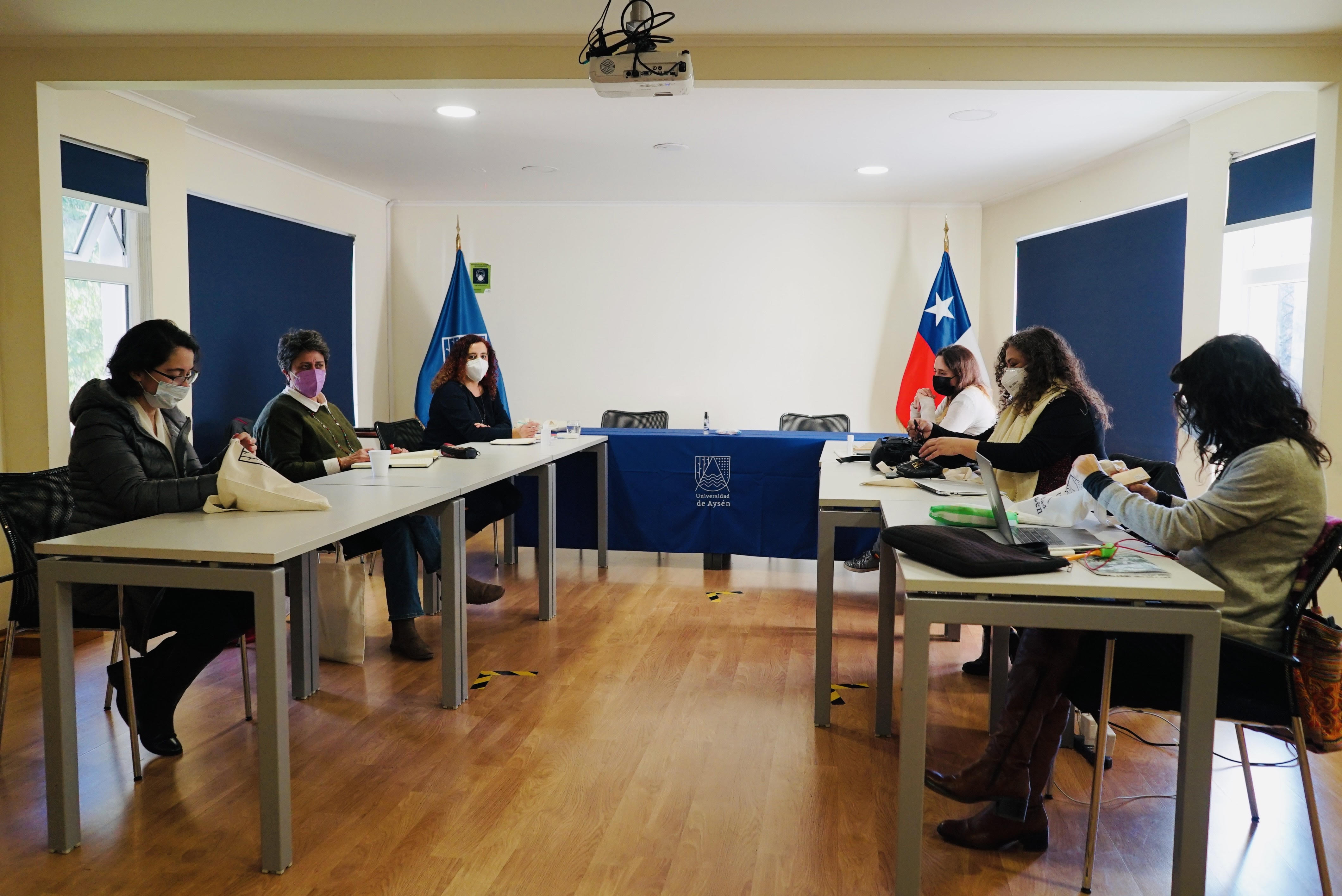 Comité Ejecutivo de la Comisión de Igualdad de Género del CRUCH sesiona por primera vez en la UAysén