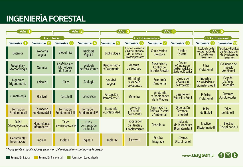 Ingeniería Forestal - malla y requisitos